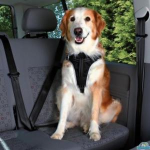 TRIXIE Szelki samochodowe z wkładką dla psa - 2833049592