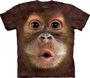 Big Face Baby Orangutan - The Mountain - 2833178093
