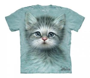 Blue Eyed Kitten - The Mountain - Junior - 2833178264