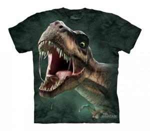 T-Rex Roar - The Mountain - Junior - 2833178273