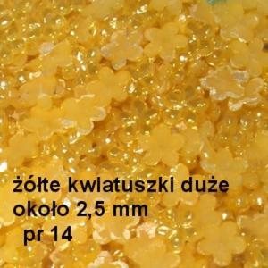 Perłowe ozdoby pr14 kwiatki złote perłowe 20szt. - 2882063367