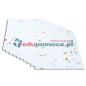 Kwiecisty papier z białym tłem - 2826503992