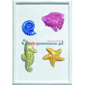 Zwierzęta morskie - Foremka - 2826508439