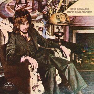 ROD STEWART - NEVER A DULL MOMENT (Vinyl LP) - 2826394422