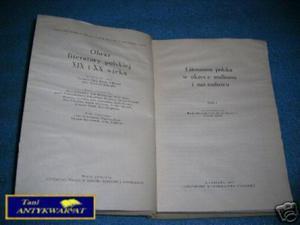 LITERATURA POLSKA W OKRESIE REALIZMU I NATURALIZMU - 2822529370