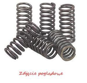 Sprężyny sprzęgłowe EBC CSK905 (kpl.) - 2848056223