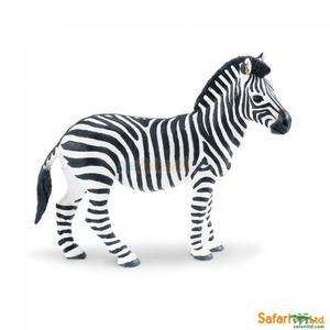 Zebra, SafariLtd - 2847416867