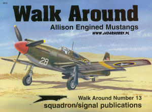 Squadron 5513 - Allison Engined Mustangs Walk Around - 2824107780