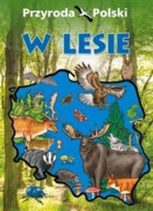 Przyroda Polski. W lesie - 2844892978