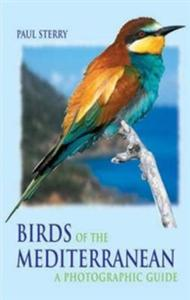 Birds of the Mediterranean - 2832904522