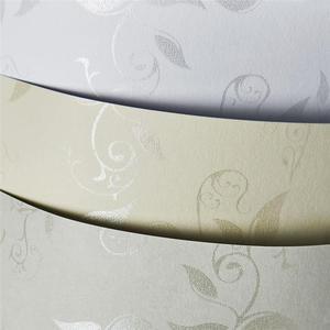 Papier ozdobny ARGO 230g. - liana biała - 2861970564