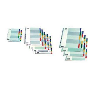 Przekładki BANTEX A4 MAXI 12 kolorów PP 6032 - 2881748482