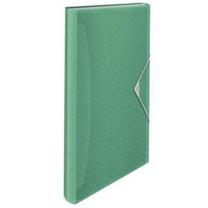 Teczka z przegródkami ESSELTE ColourIce zielony 626253 - 2881748564