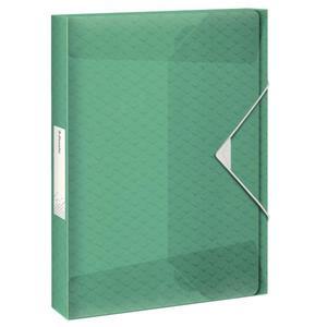 Teczka z gumką ESSELTE ColourIce poszerzana zielony 626265 - 2881748570