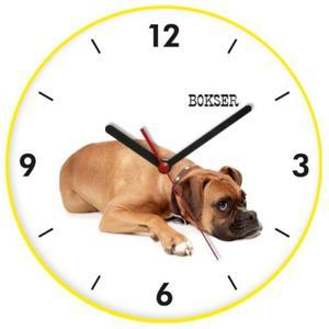 Zegar kolorowy ścienny pies bokser