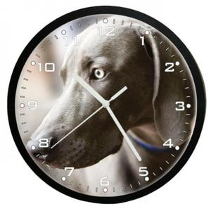 Zegar naścienny pies wyżeł