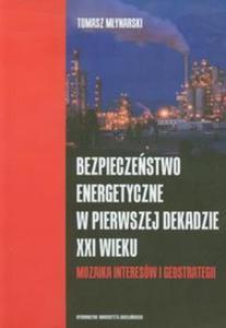 Bezpieczeństwo energetyczne w pierwszej dekadzie XXI wieku - 2857595591