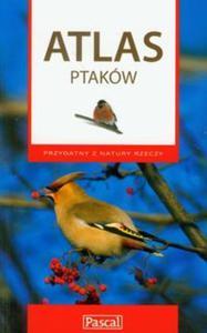 Atlas ptaków - 2825737070