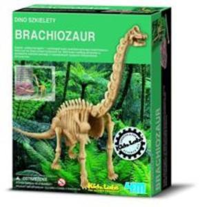 Dino szkielety Brachiosaurus - 2825745417