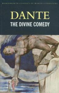 The Divine Comedy - 2853497751