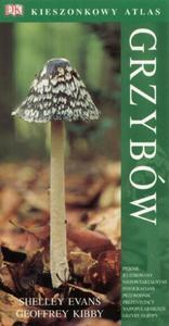 Kieszonkowy atlas grzybów - 2825658395