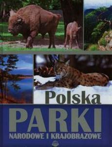 Polska Parki narodowe i krajobrazowe - 2825857216