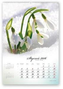 Kalendarz 2016 RW Poezja natury - 2825883169