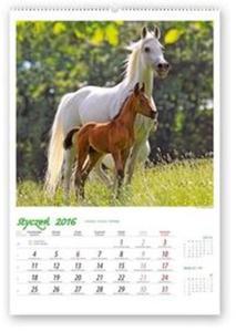 Kalendarz 2016 RW Konie w obiektywie - 2825883171