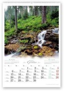 Kalendarz 2016 RW Lasy Polskie - 2825883399