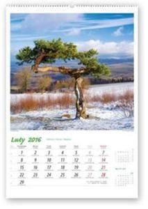 Kalendarz 2016 RW Pejzaże polskie - 2825883400
