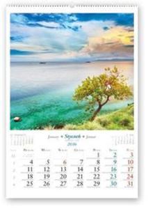 Kalendarz 2016 RW Drzewa świata - 2853584735