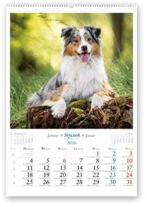 Kalendarz 2016 RW Nasze psy - 2825883409