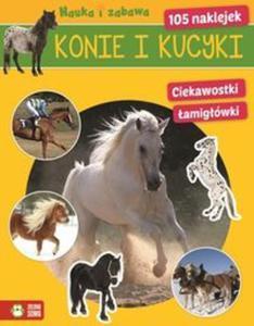 Konie i kucyki Nauka i zabawa - 2853585657