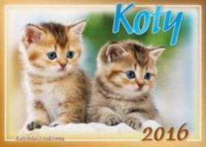 Kalendarz 2016 Koty rodzinny - 2857749651