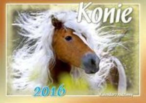 Kalendarz 2016 Konie rodzinny - 2825885201