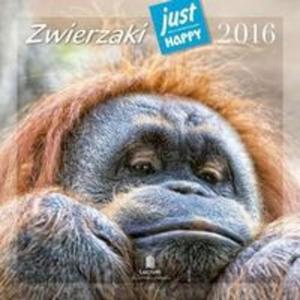 Kalendarz praktyczny 2016 PK 06 Zwierzaki - 2853586728