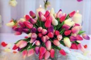 Kalendarz 2016 Jednodzielny tulipany - 2825889549