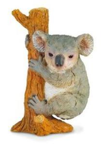 Miś koala wspinający się M - 2857796635