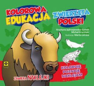 Kolorowa edukacja Zwierzęta Polski - naklejka - 2857796978