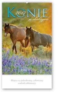 Kalendarz 2017 RW 29 Konie w obiektywie - 2838455044