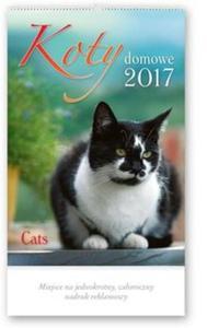 Kalendarz 2017 RW 31 Koty domowe - 2838455046