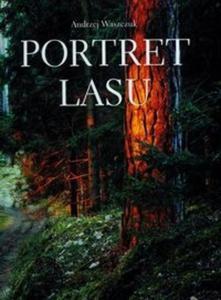 Portret lasu - 2825666696