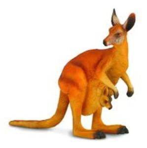 Kangur czerwony L - 2857825725