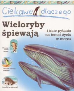 Ciekawe dlaczego wieloryby śpiewają i inne pytania na temat życia w morzu - 2825650241