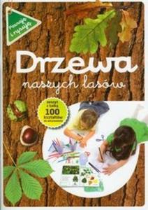 Drzewa naszych lasów - 2825703529