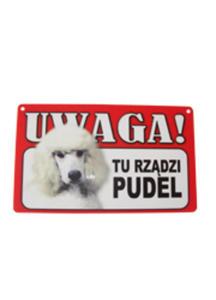 TABLICZKA OSTRZEGAWCZA TU RZĄDZI PUDEL - 2825196178
