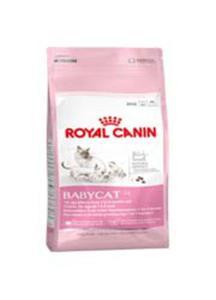 ROYAL CANIN FELINE BABYCAT 34 4 kg - 2850627941
