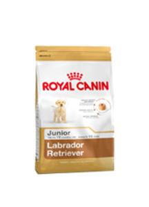 ROYAL CANIN BREED LABRADOR JUNIOR 12 kg - 2854928592