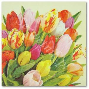 Tulipanów bukiet wspaniały IHR serwetka do decoupage - 2850353372